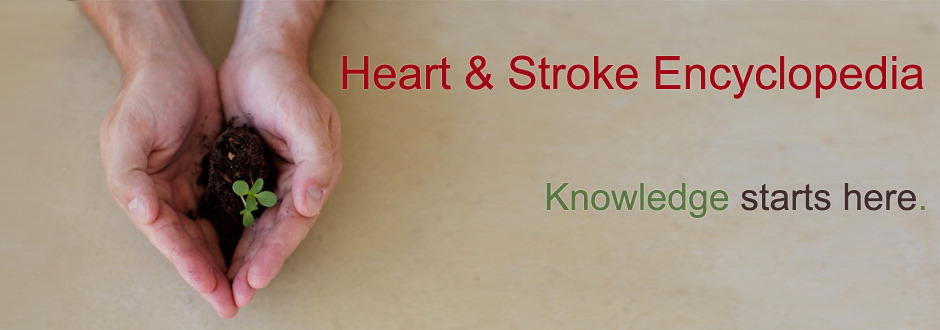 Heart and Stroke Encyclopedia Graphic Banner